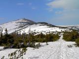 Śnieżka z Czarnego Grzbietu