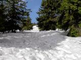 Dużo śniegu
