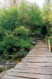 Drewniany most w drodze pod Łabski Szczyt